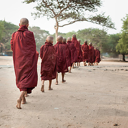 Buddhist novices in their morning walk to beg for food, Bagan, Myanmar, Asia.