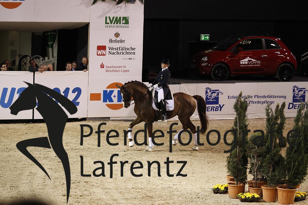 BERESFORD Hayley, Belissimo NRW<br /> Münster K+K Cup - 2012<br /> (c) www.sportfotos-Lafrentz. de/Stefan Lafrentz