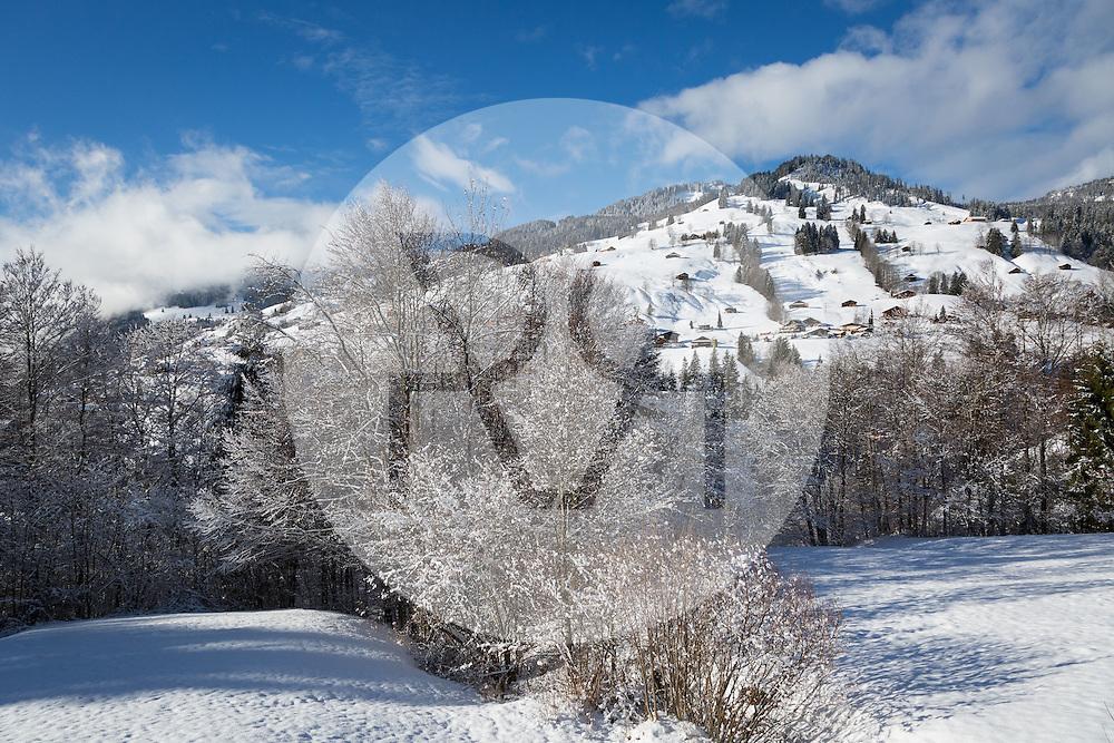 SCHWEIZ - HABKERN - Verschneite Winterlandschaft - 05. Januar 2016 © Raphael Hünerfauth - http://huenerfauth.ch