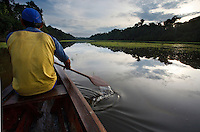 Guide on boat  leading bird watching tour in flooded forest, Amazonas, Brazil