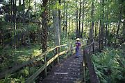 Bailey Baxter Swamp, Florida<br />