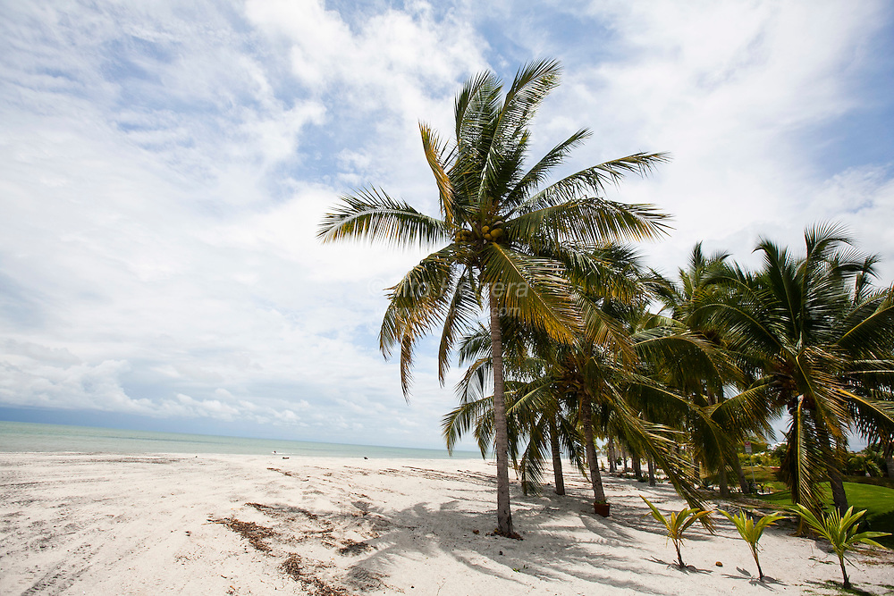 Views of the beach areas in front of the house. Photo: Tito Herrera for The New York Times