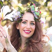 Cannizaro Fairy