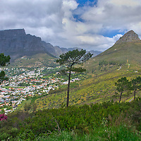 Alberto Carrera, Lion's Head, Table Mountain, Table Mountain National Park, Cape Town, Western Cape, South Africa, Africa