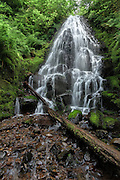 Fairy Falls in the Columbia River Gorge near Portland, Oregon.  This fairly small waterfall is quite lovely, with gentle flow over a series of stepped rocks.