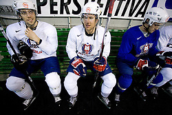 David Rodman, Mitja Robar and  Klemen Pretnar at first practice of Slovenian National Ice hockey team before World championship of Division I - group B in Ljubljana, on April 5, 2010, in Hala Tivoli, Ljubljana, Slovenia.  (Photo by Vid Ponikvar / Sportida)