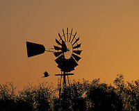 Silhouette of a Windmill at Dawn on a Ranch in Southern Texas. Image taken with a Nikon Df camera and 80-400 mm VRII lens (ISO 560, 300 mm, f/9, 1/1250 sec).