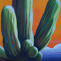 Stately saguaros dot the Sonoran Desert, each with their own personality.<br />