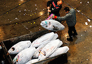 Buyers load frozen tuna into a container at Misaki Port fish market, west of Tokyo, Japan on Tuesday March 17 2009.