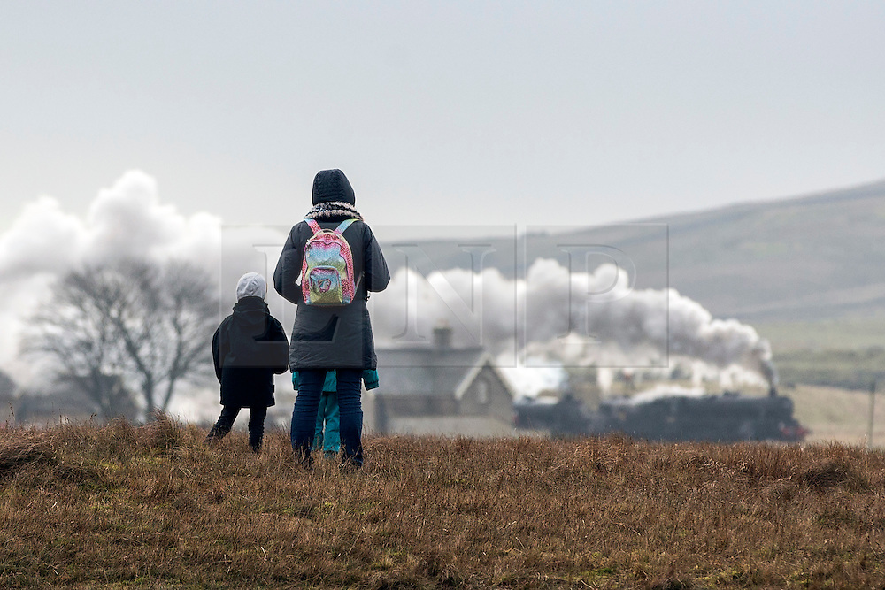 © Licensed to London News Pictures. 23/01/2016. Ribblehead UK. Photograph show people watching two historic Black 5 locomotives pulling the Cumbrian Mountain express train over the Ribblehead Viaduct making it the first steam train of the year to travel over the historic viaduct.Photo credit: Andrew McCaren/LNP