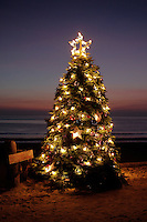 9 December 2012: Christmas Tree on the beach at Crystal Cove in Newport Coast, CA.