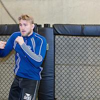 Jimi Manuwa vs. Alexander Gustafsson