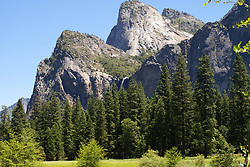 Yosemite National Park - Early Summer