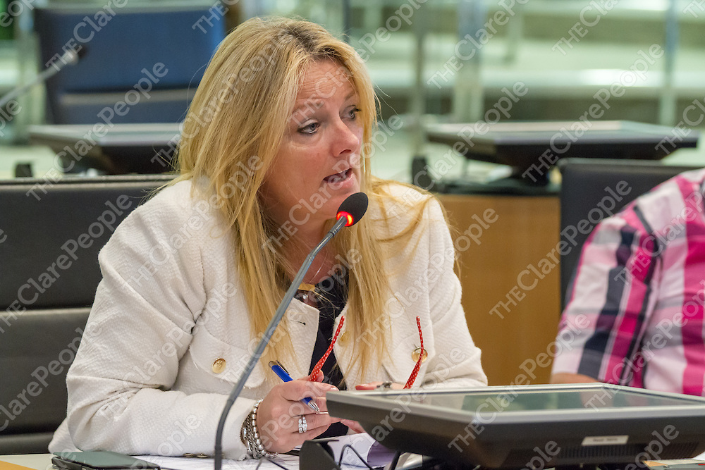 Cllr. Mary Howard speaking during the recent Clare County Council meeting