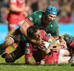Leicester Tigers replacement, Graham Kitchener tackles Scarlets fly half, Rhys Priestland - Photo mandatory by-line: Dougie Allward/JMP - Mobile: 07966 386802 - 16/01/2015 - SPORT - Rugby - Leicester - Welford Road - Leicester Tigers v Scarlets - European Rugby Champions Cup