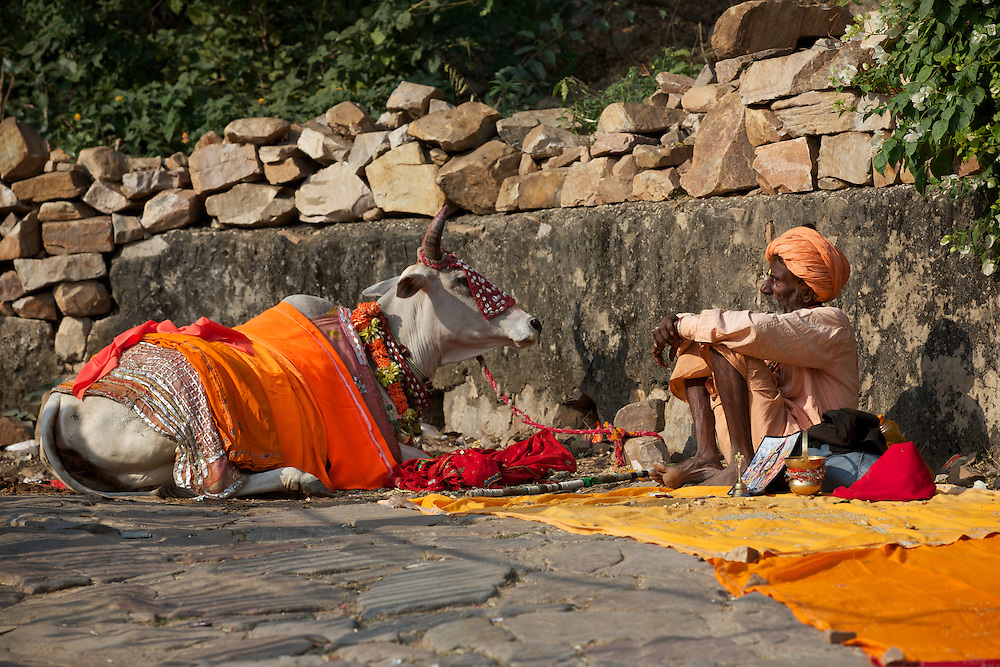 Jaipur, Rajasthan, India Galwhar Bagh, Galta, Monkey Temple