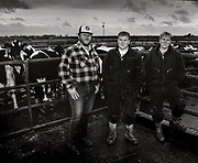 cows and milk producer portraits