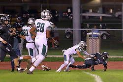 13 October 2017: Richwoods  Knights at Normal West Wildcats. IHSA football, Normal Illinois<br /> <br /> #NormalWestFootball #Wildcats  #alphoto513 #IHSA #IHSAFootball