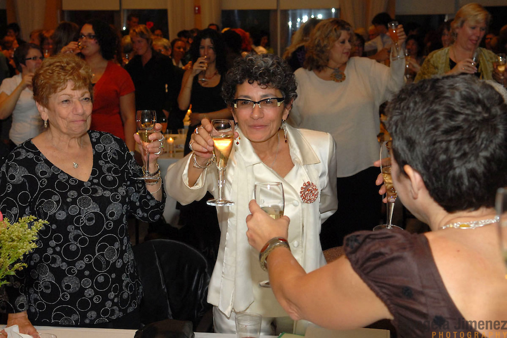 Katherine Acey, center, gets a toast from the crowd, including her aunt Cam A. Centolella, left, and friend Anne Dohna, right, during a ceremony/party held to celebrate her 20 years of service as the Executive Director of the Astraea Lesbian Foundation for Justice, at the 1199 penthouse at 330 West 42nd Street in New York City on October 10, 2007. ..Photo by Angela Jimenez.photographer contact:.angelajime@gmail.com.917-586-0916