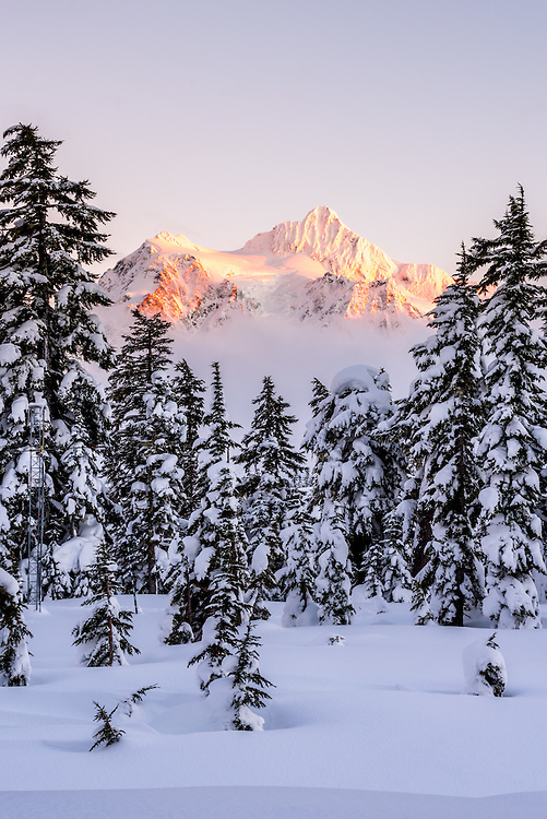 Mt Shuksan of the North Cascades National Park bathed in the glorious sunset color
