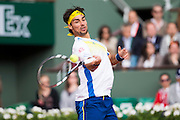 Paris, France. Roland Garros. June 1st 2013.<br /> Italian player Fabio FOGNINI against rafael NADAL