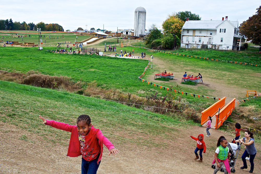 """Calvin Rodwell Elementary School Pre-kindergarten student Jordan Edwards, 4, left, charges up a hill toward a farm themed playground at Summers Farm in Frederick, MD on Oct. 24, 2012. The visit to the farm was part of a """"Common Core"""" reading and learning unit for their class, which aims to follow up non-fiction reading with learning in the field. The day prior the children read a book about going to a farm."""