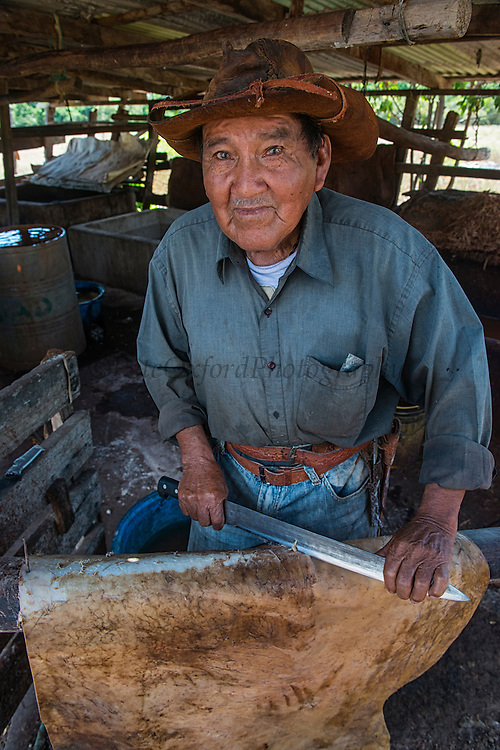 Leather making<br /> Scraping cowhide to make leather<br /> Dadanawa Ranch<br /> Cattle Ranch<br /> Savanna <br /> South Rupununi<br /> GUYANA<br /> South America<br /> Once the largest private ranch in the world<br /> Cyril Andrews