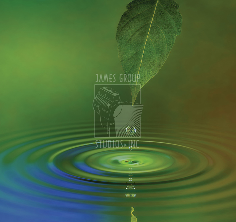 A water drop from a leaf causing a ripple on the surface reflecting a green jungle atmosphere