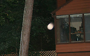 A vibrating pink orb floating between the photographer and house at dark.