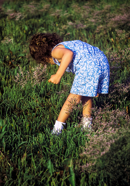 Young girl picking flowers.