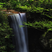 &quot;Cool as a Cucumber&quot; 2 <br />