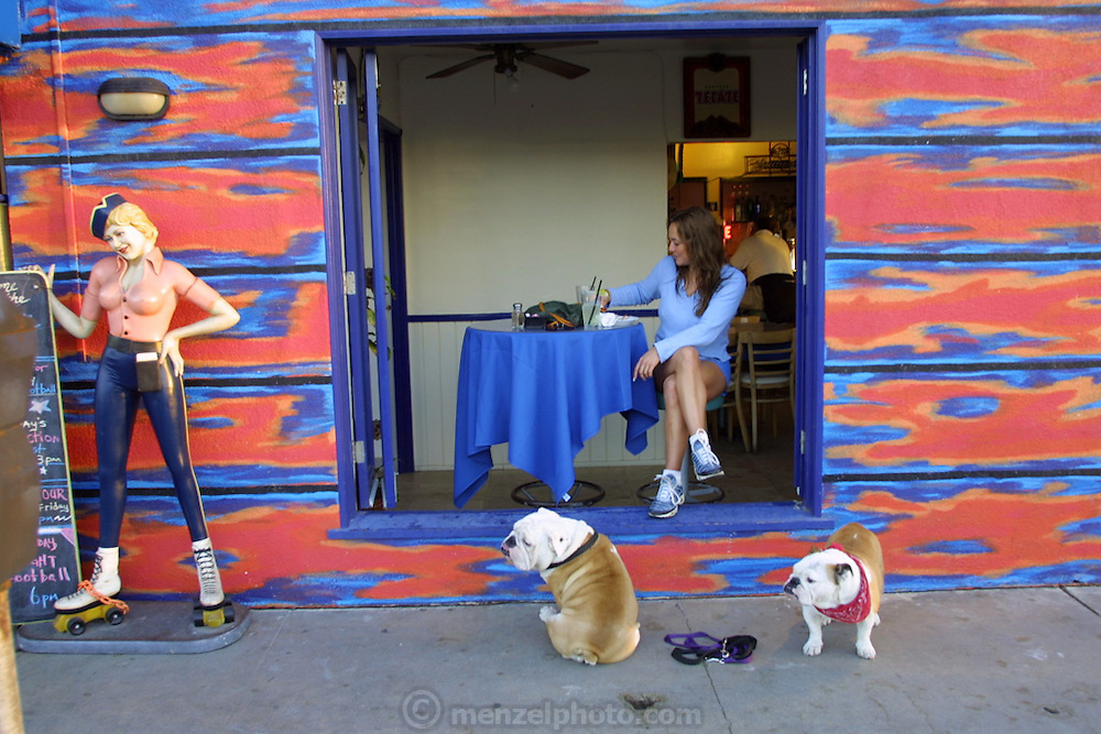On the boardwalk in Venice Beach, California. Two dogs wait for their owner to have a drink.