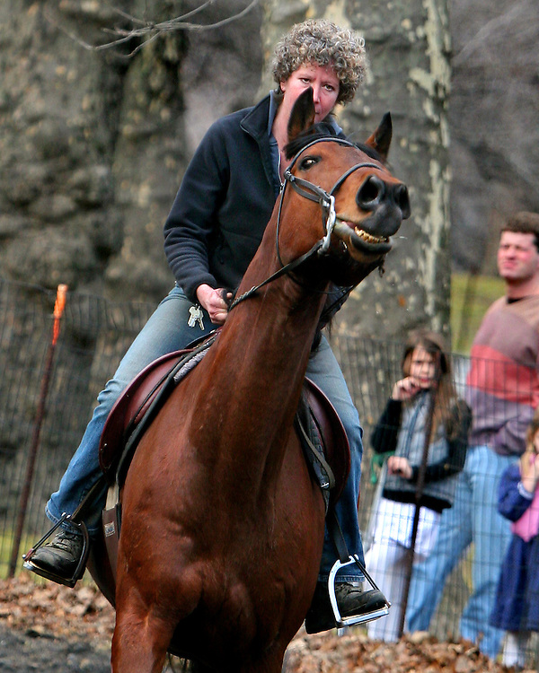The rider is very skilled, but the horse is very rank.