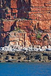 A stunning sandstone hillside in Kuri Bay.