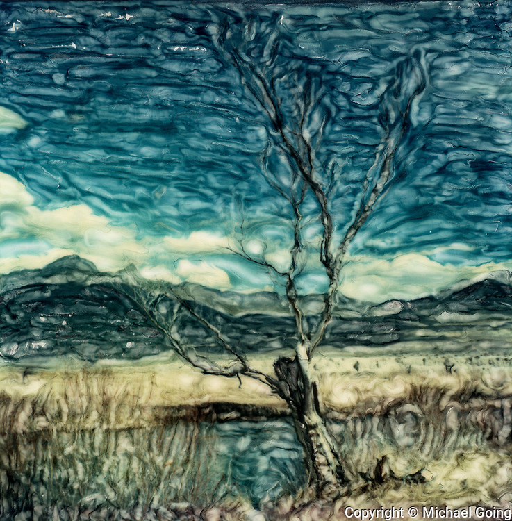 Altered Polaroid photograph of tree with bare branches against river, field, mountain & sky background