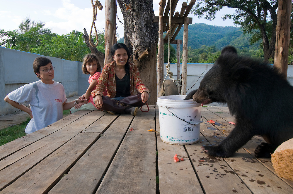 "Sangduen ""Lek"" Chailert with a baby bear she rescued.  Lek looks on with Yvonne Menn (left) whom brought her 6-year old daughter Sari (center) from Switzerland to work for a week at the park.  While hand-feeding an elephant with Sari she remarks, ""It is not like work all-day.  Volunteering is fun too!"""