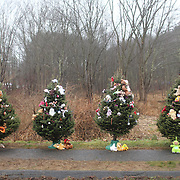 Christmas trees set up at the school sign in Sandy Hook after the mass shootings at Sandy Hook Elementary School, Newtown, Connecticut, USA. 16th December 2012. Photo Tim Clayton