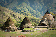 Traditional, thatch-roofed homes at Wae Rebo, Manggarai, Flores.