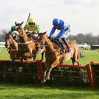 Islandmagee and Adam Wedge winning the 1.10 race