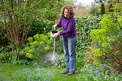 Feeding a lawn using a liquid fertiliser