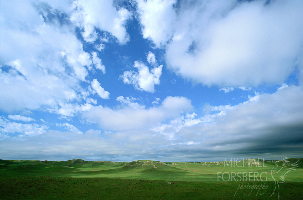 Agate Fossil Beds National Monument, Nebraska. On this day in early June, blue sky and cloud shadows stretched from horizon to horizon across the shortgrass prairie of Agate Fossil Beds National Monument. Western Nebraska is at the eastern edge of the shortgrass prairie region that extends roughly west of the 100th Meridian from Oklahoma to Canada to the Rocky Mountains. Shortgrass prairie is the home to such shy animals as burrowing owls, golden eagles, swift foxes, pronghorn antelope and prairie dogs.