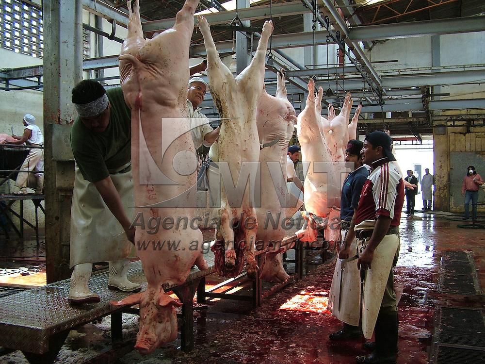 Ecatepec, Mex.- Aspectos del rastro municipal ubicado en Xalostoc, donde se sacrifican mensualmente 3 mil animales de ganado bovino y 7 mil de ganado porcino y que pretende ser concesionado por el gobierno municipal a la iniciativa privada por falta de recursos. Agencia MVT / Jose Israel Nu&ntilde;ez. (DIGITAL)<br /> <br /> <br /> <br /> <br /> <br /> <br /> <br /> NO ARCHIVAR - NO ARCHIVE