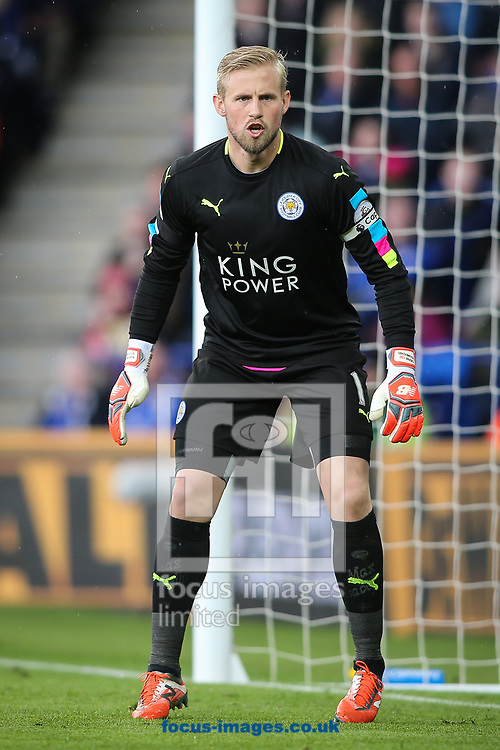 Kasper Schmeichel of Leicester City during the Premier League match at the King Power Stadium, Leicester<br /> Picture by Andy Kearns/Focus Images Ltd 0781 864 4264<br /> 01/04/2017