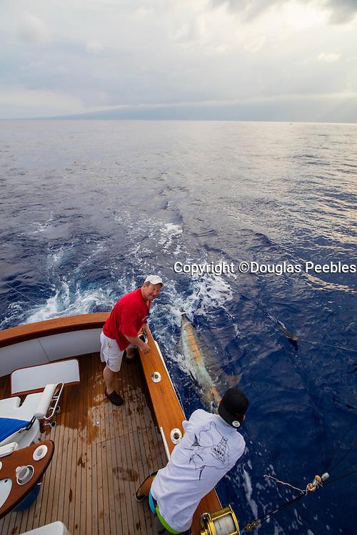 Marlin Fishing, Kailua-Kona, Big Island of Hawaii