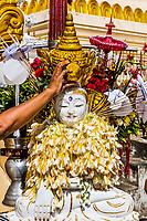 watering buddha statue Shwedagon Pagoda Yangon (Rangoon) in Myanmar (Burma)