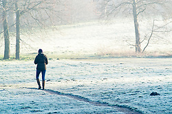 © Licensed to London News Pictures. 14/02/2019. Sidcup.<br /> A cold and frosty start to Valentines day at Footscray Meadows in Sidcup this morning.  Photo credit: Grant Falvey/LNP