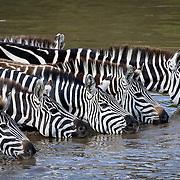Kenya, 2008