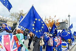© Licensed to London News Pictures. 05/11/2019. LONDON, UK.  Remain supporters protest wave EU flags outside the Houses of Parliament.  Inside, MPs are making their final statements on the day before Parliament is dissolved ahead of the General Election on 12 December, where each parties stance on Brexit will have a significant affect on the voting.  Photo credit: Stephen Chung/LNP
