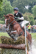 CHILLI MORNING ridden by William Fox-Pitt at Bramham International Horse Trials 2016 at  at Bramham Park, Bramham, United Kingdom on 11 June 2016. Photo by Mark P Doherty.