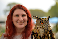 Old Westbury, New York, U.S. - August 23, 2014 - ALLISON RATIS, of Lynbrook, is smiling behind AUGIE, a 4-year-old male Eurasian Eagle Owl (Bubo bubo) with large orange eyes, from WINORR, Wildlife in Need of Rescue and Rehabilitation, at the 54th Annual Long Island Scottish Festival and Highland Games, co-hosted by L. I. Scottish Clan MacDuff, at Old Westbury Gardens. WINORR is run by the Horvaths, licensed animal rehabilitators in North Massapequa.